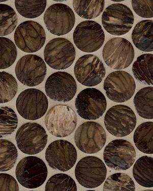 Habitus Cascarita Mosaic